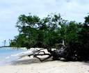 praia-de-mouro-peixe.jpg