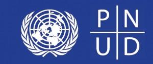 PNUD – Concurso para empresas nacionais e estrangeiras