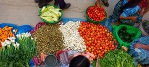 FAO reafirma apoio a países da Cplp para erradicar fome e subnutrição